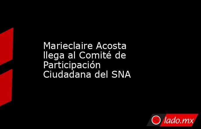 Marieclaire Acosta llega al Comité de Participación Ciudadana del SNA. Noticias en tiempo real