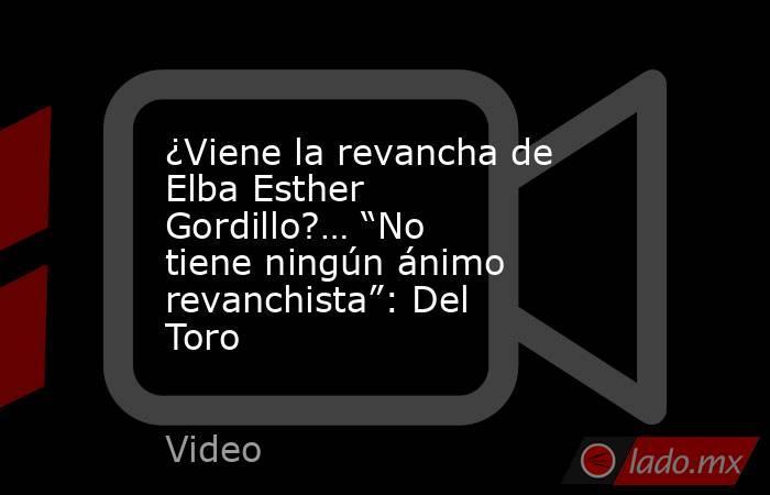 """¿Viene la revancha de Elba Esther Gordillo?… """"No tiene ningún ánimo revanchista"""": Del Toro. Noticias en tiempo real"""
