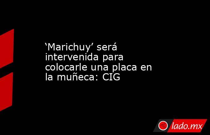 'Marichuy' será intervenida para colocarle una placa en la muñeca: CIG. Noticias en tiempo real