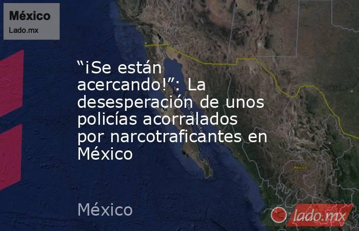 """""""¡Se están acercando!"""": La desesperación de unos policías acorralados por narcotraficantes en México. Noticias en tiempo real"""