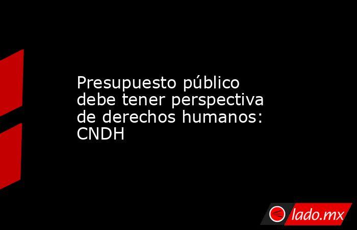 Presupuesto público debe tener perspectiva de derechos humanos: CNDH. Noticias en tiempo real
