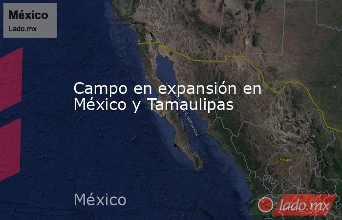 Campo en expansión en México y Tamaulipas. Noticias en tiempo real