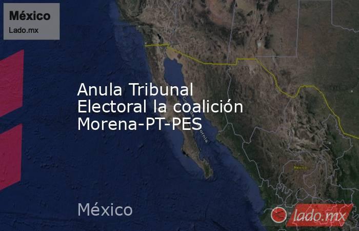 Anula Tribunal Electoral la coalición Morena-PT-PES. Noticias en tiempo real