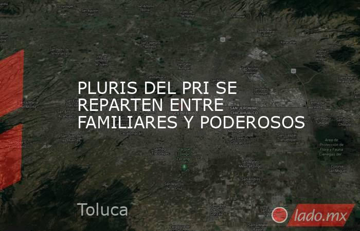 PLURIS DEL PRI SE REPARTEN ENTRE FAMILIARES Y PODEROSOS. Noticias en tiempo real