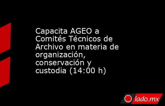 Capacita AGEO a Comités Técnicos de Archivo en materia de organización, conservación y custodia (14:00 h). Noticias en tiempo real