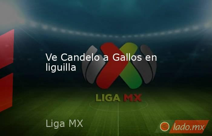 Ve Candelo a Gallos en liguilla. Noticias en tiempo real