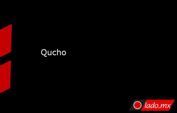 Qucho. Noticias en tiempo real
