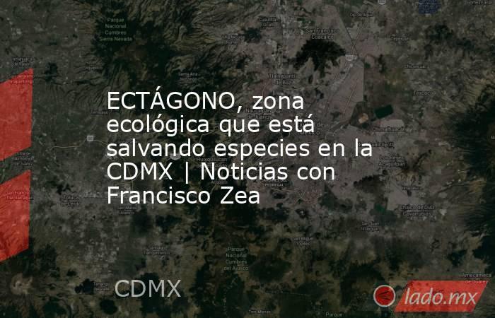 ECTÁGONO, zona ecológica que está salvando especies en la CDMX | Noticias con Francisco Zea. Noticias en tiempo real