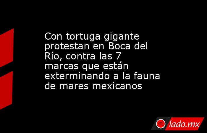 Con tortuga gigante protestan en Boca del Río, contra las 7 marcas que están exterminando a la fauna de mares mexicanos. Noticias en tiempo real