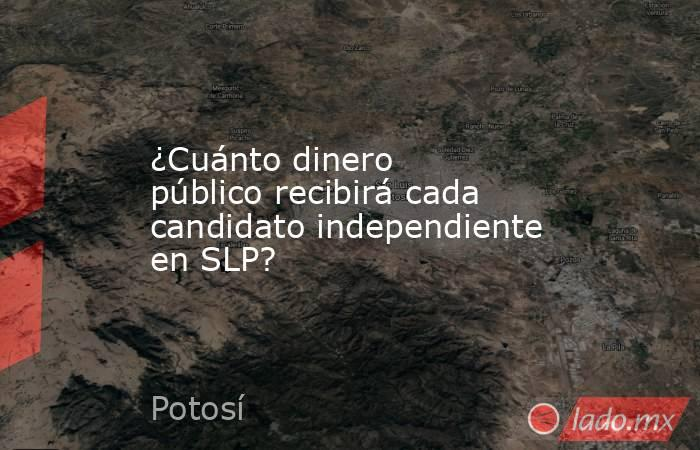 ¿Cuánto dinero público recibirá cada candidato independiente en SLP?. Noticias en tiempo real