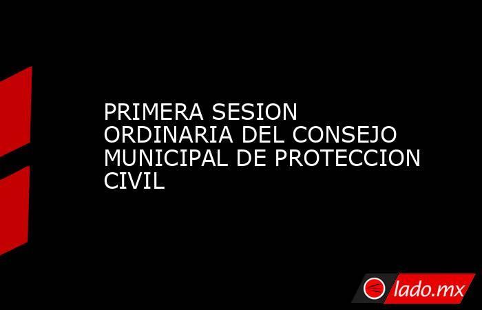 PRIMERA SESION ORDINARIA DEL CONSEJO MUNICIPAL DE PROTECCION CIVIL. Noticias en tiempo real